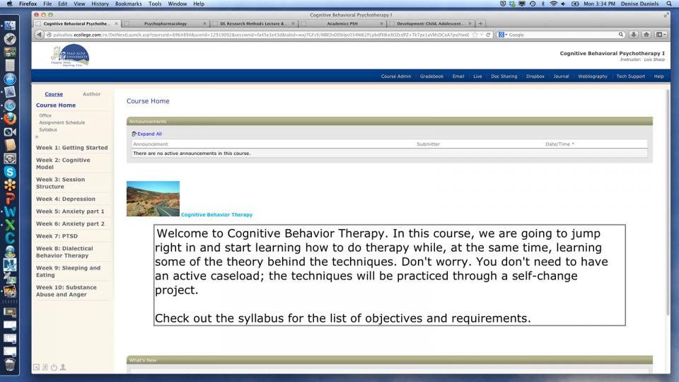 Screenshot of online courseware in action