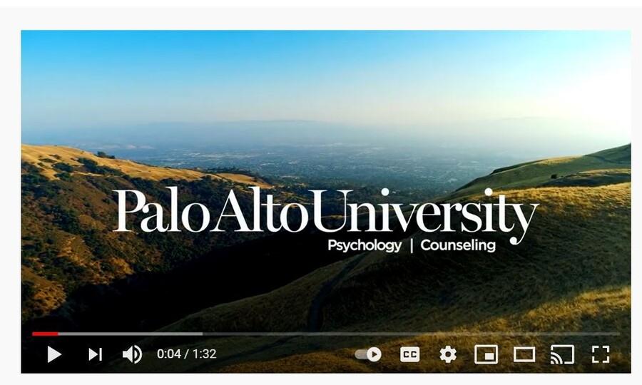 Image of PAU Brand video on YouTube